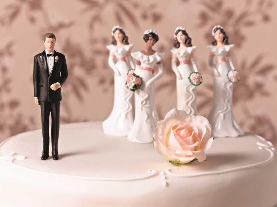 полигамия для мужчин