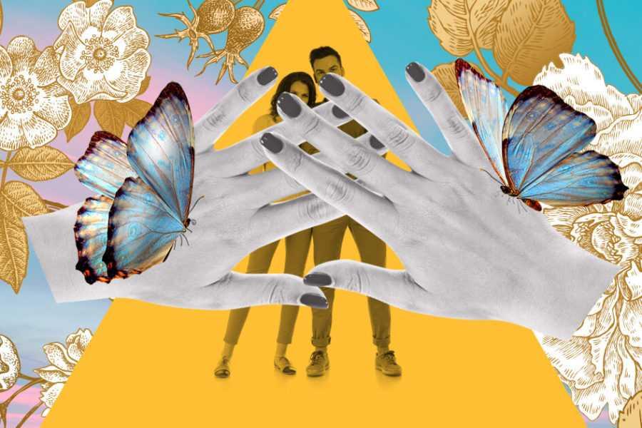руки бабочки