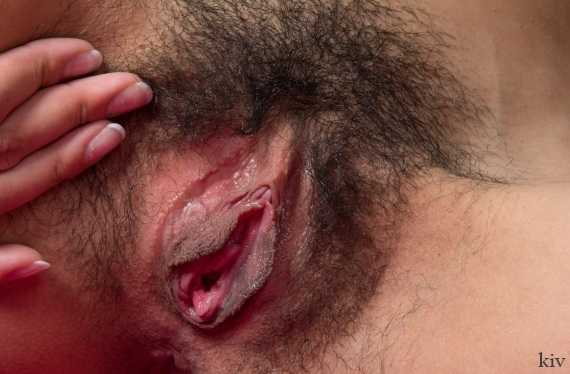 аккуратная заросшая вагина