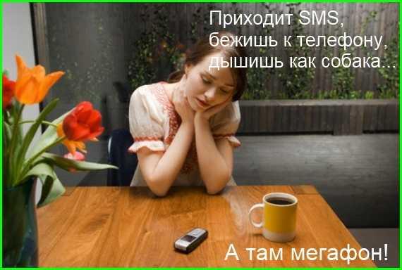 мемы - бежишь к телефону