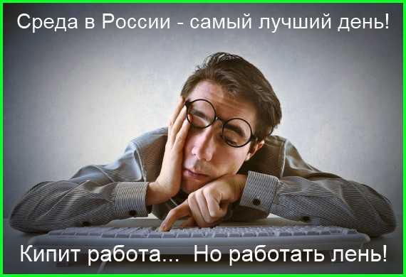 среда в России